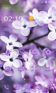 Lilac Lavender Theme Purple Theme Amazing Wallpapers Themes